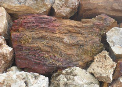 couyrac-mur-pierre-seche-david-fontayne (14)