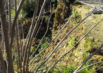 david-fontayne-murailler-dordogne (3)